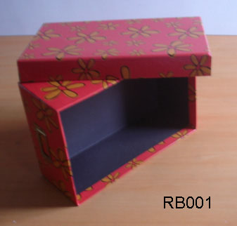 Shoes Storage Box